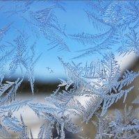 Нарисовал мороз узоры... :: Лена L.