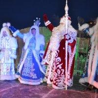 Старт новогоднего шествия :: Василий Николаев