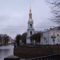 золотая вертикаль :: Ната Иванова