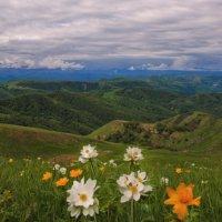 На горном перевале. :: Эдуард Сычев