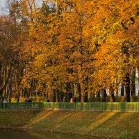Осень :: Наталия Зыбайло