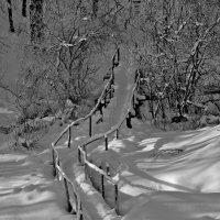 Зимняя тропа :: Владимир Ноздрачев