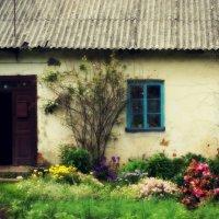 village life :: Alena Kramarenko
