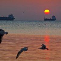 Восход в Феодосийском заливе. :: Эдуард Сычев