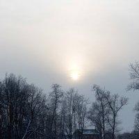 Зимний день :: Дарья Верхоломова
