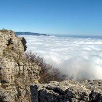 Туман на Ай-Петри :: Марина Дегтярева