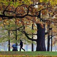 Воскресная прогулка в парке :: Елена Боржковская