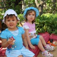 Мои внучки :: Светлана Кимовна Дробышева