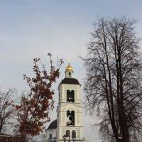 Церковь Иконы Божией Матери «Живоносный источник». Колокольня. :: Ирина Терентьева