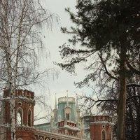 Главные ворота Царицыно - ракурс :: Ирина Терентьева