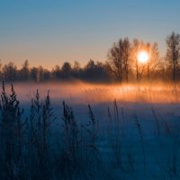 зимнее утро :: Екатерина Агаева
