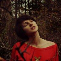 хо :: Ксения Холод