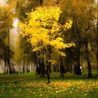 осень :: Влад Римский