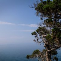 Там где небо сливается с морем... :: Елена Течиева