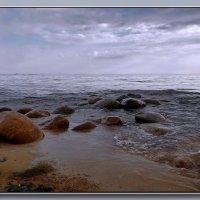 Суровый и холодный... Финский залив :: Диана Буглак