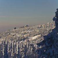 Снежное царство :: Андрей Пальцев