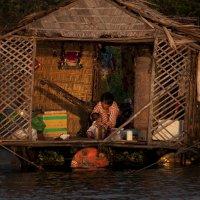 живущие на воде 2 :: Юрий Дрейзин