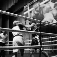Бокс 6 :: Леонид Ефремов