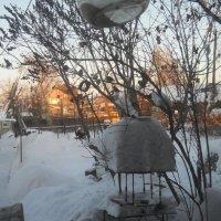Оренбургская зима :: Светлана Кимовна Дробышева