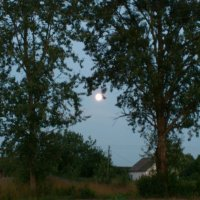 Дневная луна :: Igor Vecherinsky