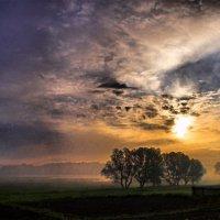 Fog over the water ... :: Носов Юрий