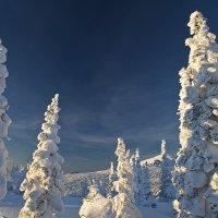 Снежное царство 2 :: Андрей Пальцев