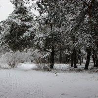 Просто зима :: Strapman _