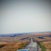 Дорога домой :: Olesya Polikanova