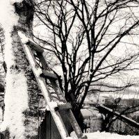 черно-белые дни :: Георгий Маркарьянц
