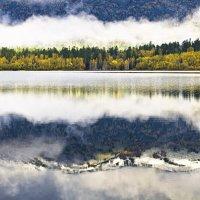 Осень :: Андрей Пальцев