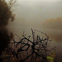 Колдовская река :: Михаил Светличный