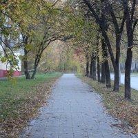 осень :: Andrey Ivanov