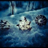 глубокий синий снег :: Анастасия Nast