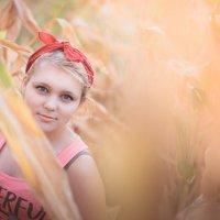 портрет девушки в кукурузном поле :: Vezzo Image
