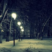 в ночном парке :: Денис Шерышев