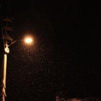 снег кружится..летает...летает :: Елена Казакевич