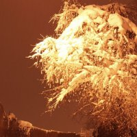 Заметает зима, заметает... :: Елена Казакевич
