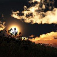 закат :: Ксения Гривская
