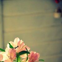 Цветы :: Zlata Tsyganok