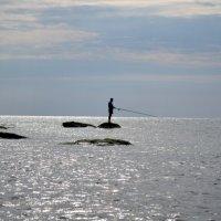 старик и море :: Александр Костин