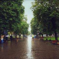 ... :: Роман Кравчук