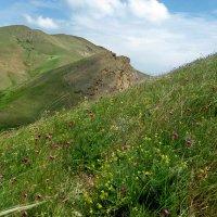 Крымские горы весной :: Марина Дегтярева