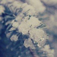 Зима... :: Олеся Микки