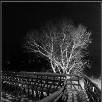 Зимним вечером да кладочке... :: Диана Буглак