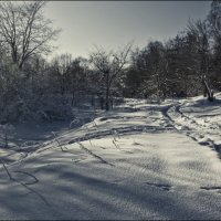 ...мороз и солнце... :: Сергей Долженко