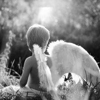 Мой ангел :: Елена Защитина