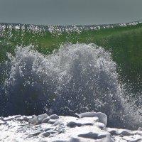 Wave ! :: Андрей Пальцев