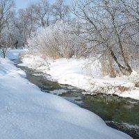 Первый снег :: Юрий Кальченко