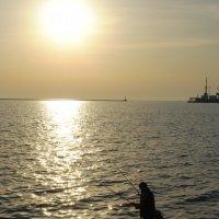 рыбалка на закате :: Виктория Мартенюк