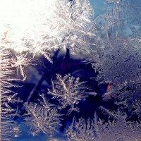 Мороз и солнце. :: ольга хадыкина